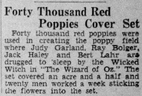 April-9,-1939-40-THOUSAND-POPPIES-Hartford_Courant