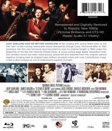 2010-Blu-ray-Rental-Back