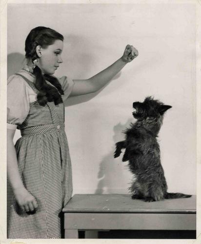 November 5, 1938 Dorthy and Toto