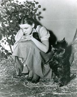 Judy-Garland-and-Toto-2